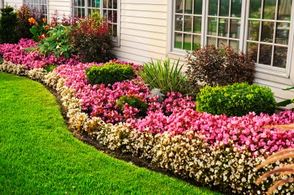 How To Maximize Your Yard Space