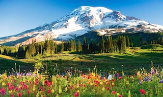 Western Washington State offers exceptional views and fantastic outdoor recreations.