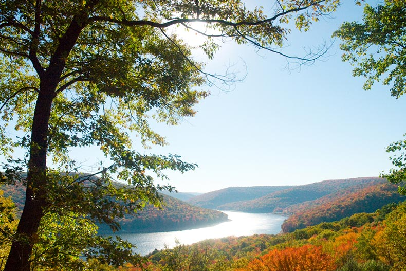 View of a reservoir lake in Allegheny National Forest in Pennsylvania