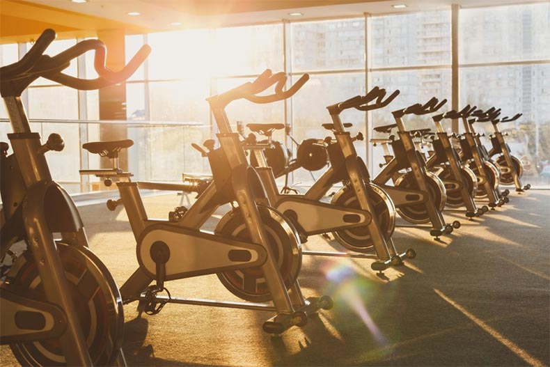 Sunlight on a row of exercise bikes in a fitness center