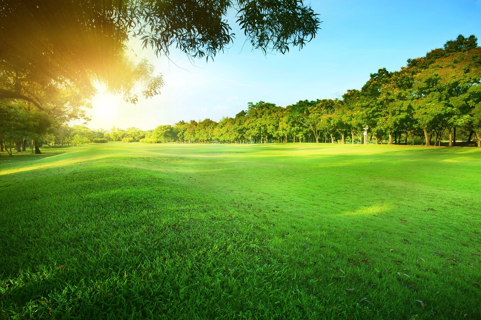 With more demand for green spaces, builders are starting to opt out for golf course and include more parks.