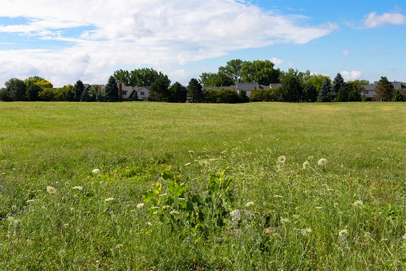 A grass field in Bolingbrook, Illinois during the summer