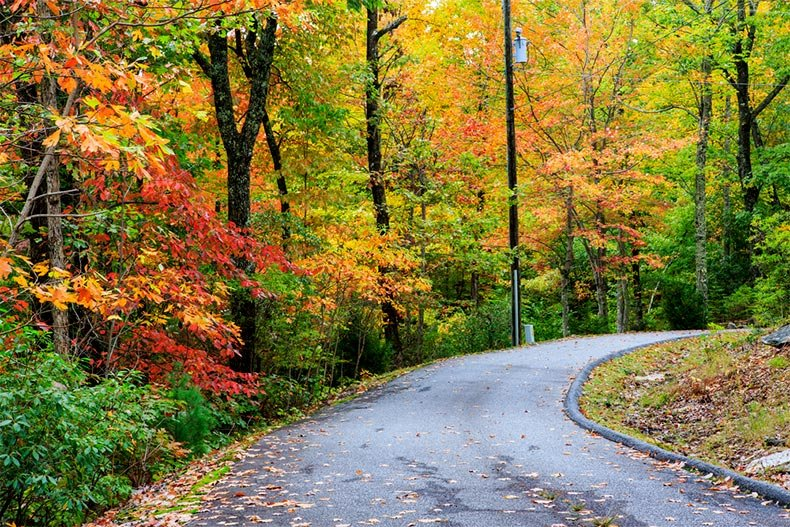View of a country road near Brevard, North Carolina in autumn