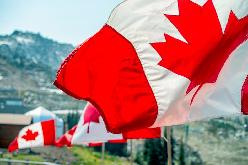 Canada flags waving at the wind with a mountain in the background