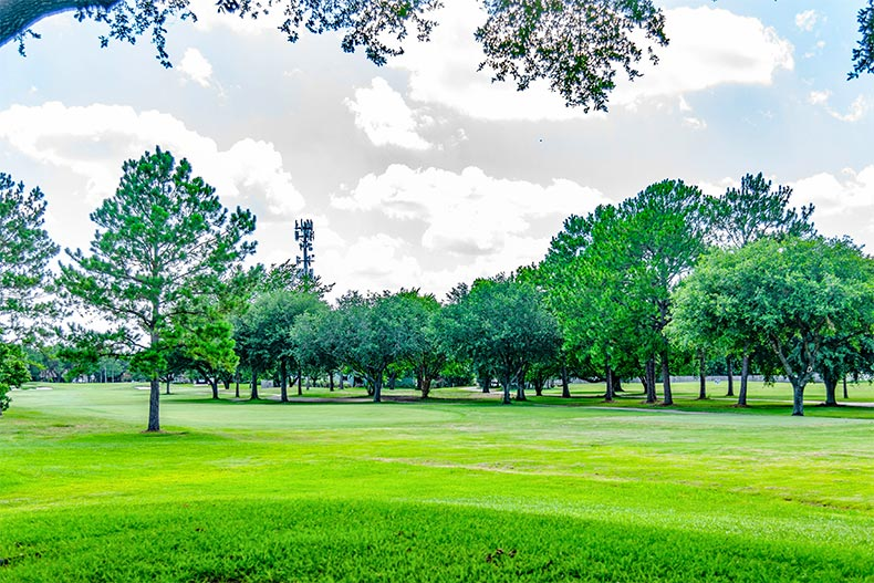 Golf course fairway in CountryPlace in Pearland, TX