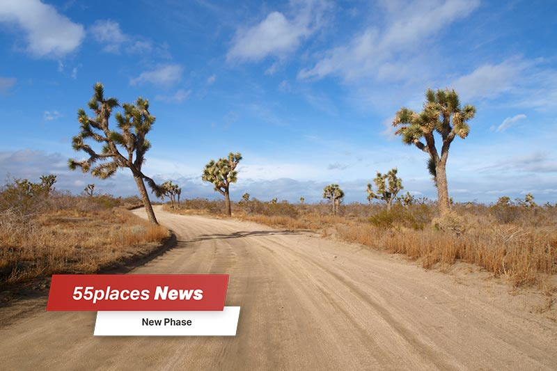 """New Phases"" banner over Joshua Trees framing a dirt road in California's Mojave Desert"