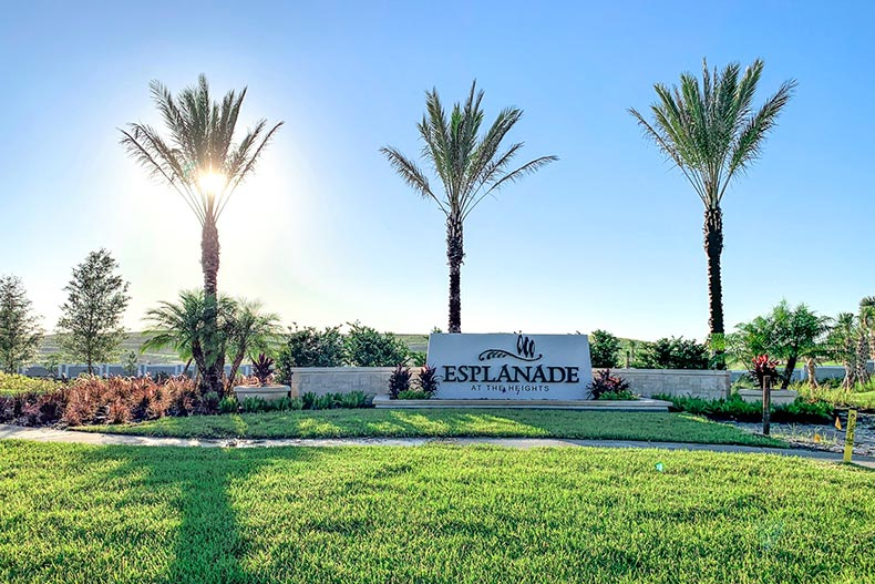 Palm trees surrounding the community sign for Esplanade at The Heights in Bradenton, Florida