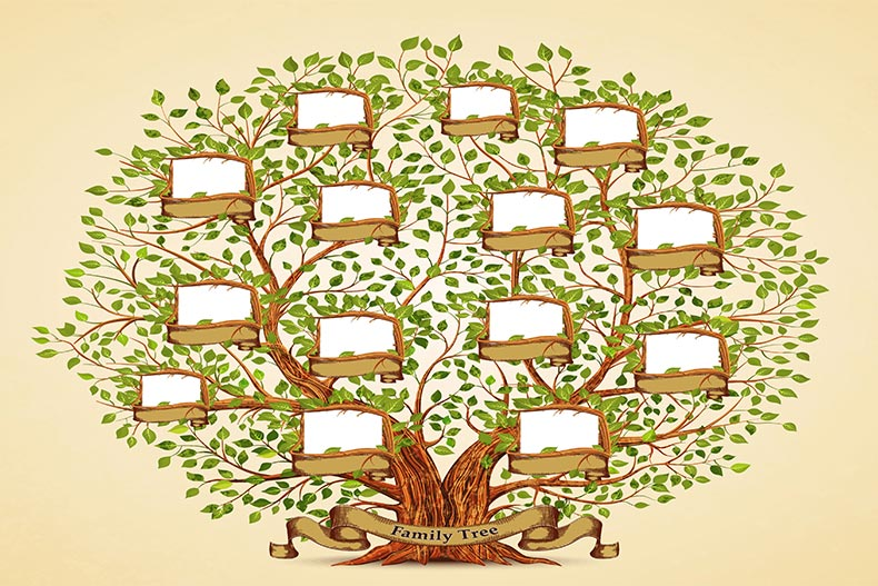 Illustration of an empty family tree