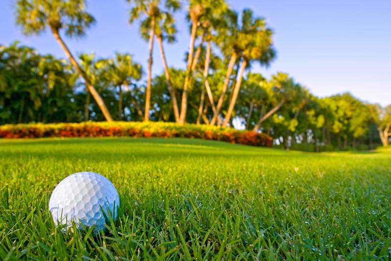 A golf ball on the fairway of a tropical golf course with dewy grass