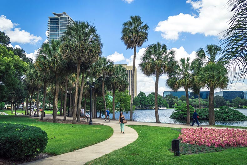 A blue sky over the sidewalks and palm trees in Lake Eola Park in Downtown Orlando, Florida
