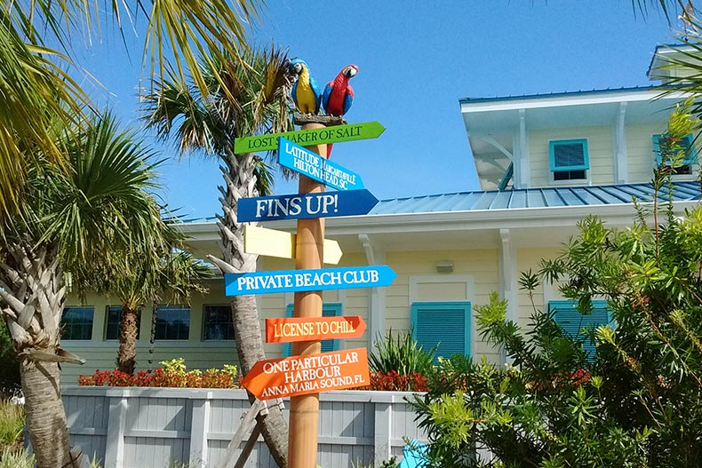 Parrots perched on a directional sign at Latitude Margaritaville in Daytona Beach, Florida