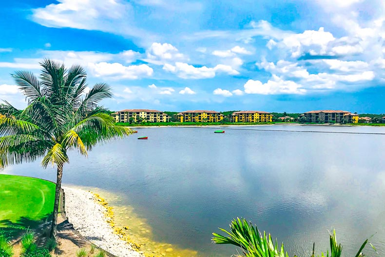 Condo buildings at the edge of a picturesque pond at Bonita National Golf & Country Club in Bonita Springs, Florida