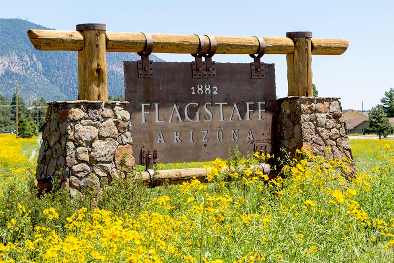 "Sign for ""Flagstaff, Arizona"" surrounded by yellow flowers with mountains in the background"