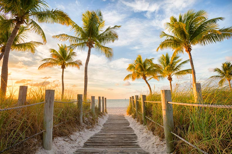 Sunrise view of a boardwalk surrounded by palm trees leading to Smathers Beach in Key West, Florida
