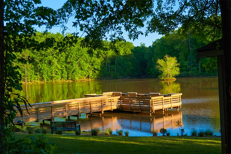 Dock on a lake surrounded by green trees in Fort Mill, SC