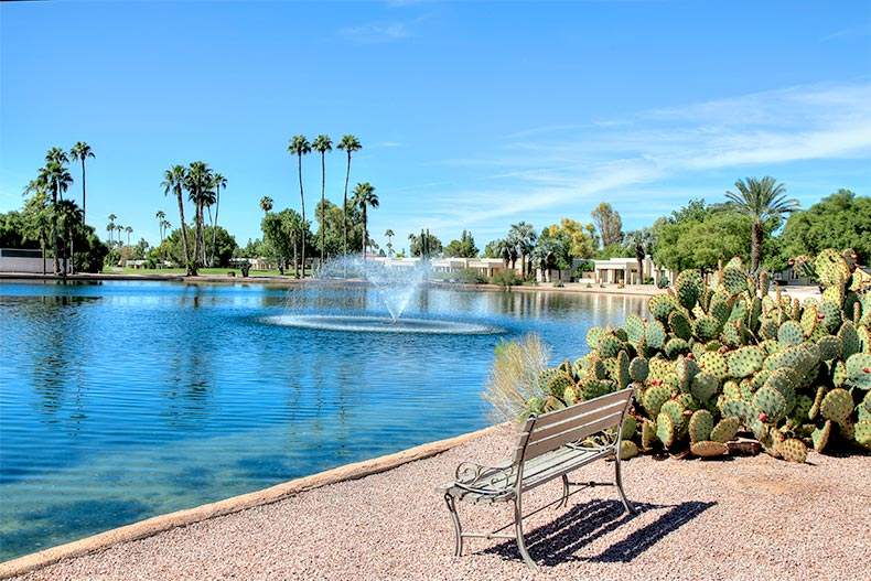 Bench beside a pond surrounded by cacti and palm trees at Fountain of the Sun in Mesa, Arizona