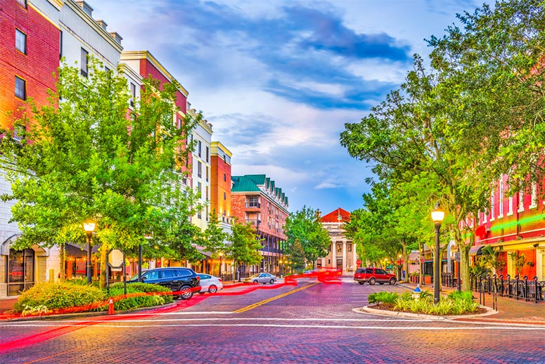 Evening view of tree-lined cobblestone streets and buildings in Gainesville, Florida