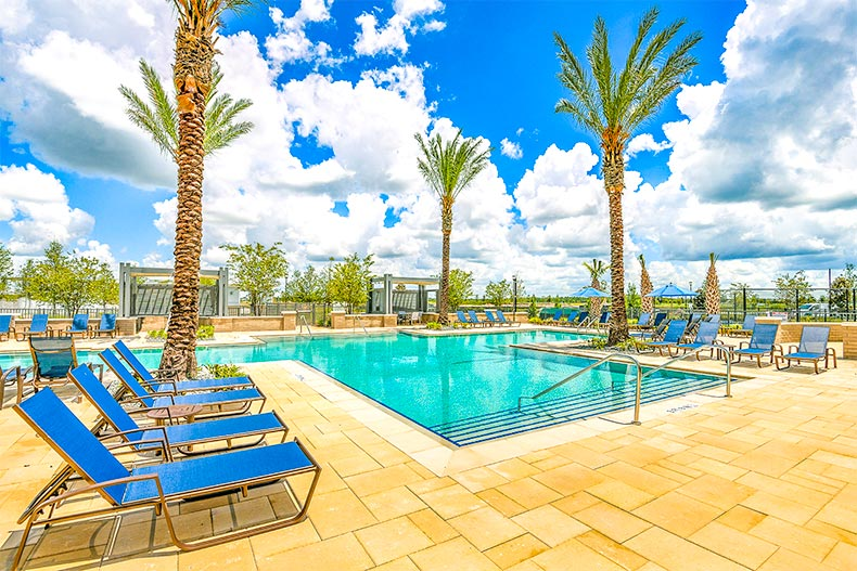 Lounge chairs and palm trees surrounding a pool in Gatherings at Lake Nona