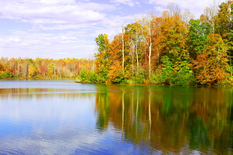 Fall reflections in the ripples on the water at Beaverdam Reservoir in Gloucester County, Virginia