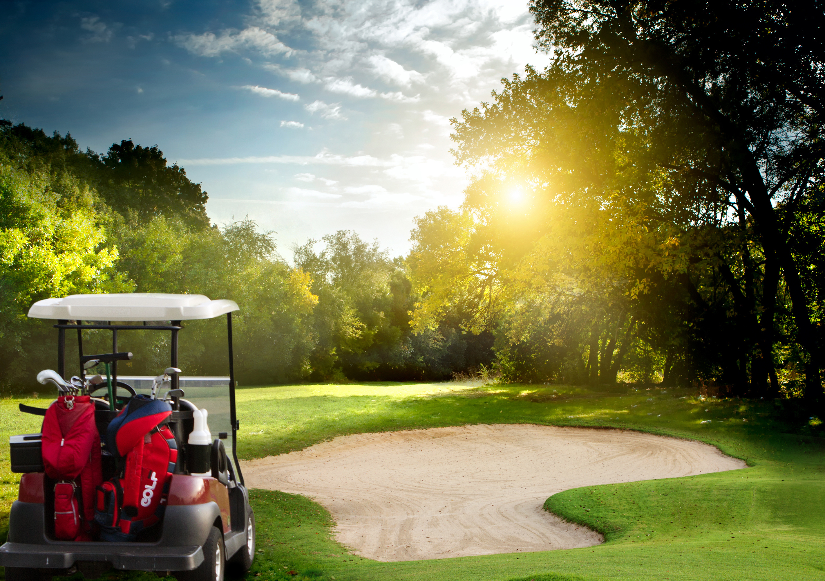These golf carts will make golf enthusiasts drool!