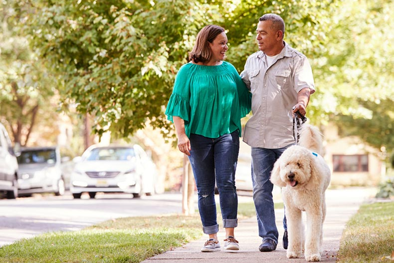 A senior couple walking their dog along a suburban sidewalk on a sunny day
