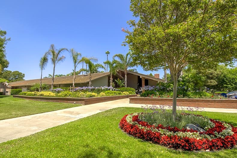 Greenery surrounding the clubhouse at Huntington Landmark in Huntington Beach, California