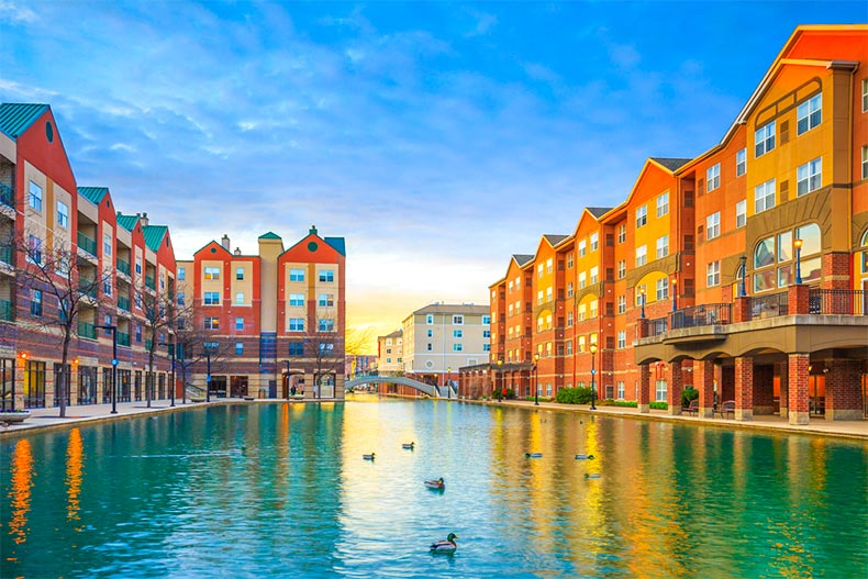 Buildings lining a canal dotted with ducks in Indianapolis, Indiana