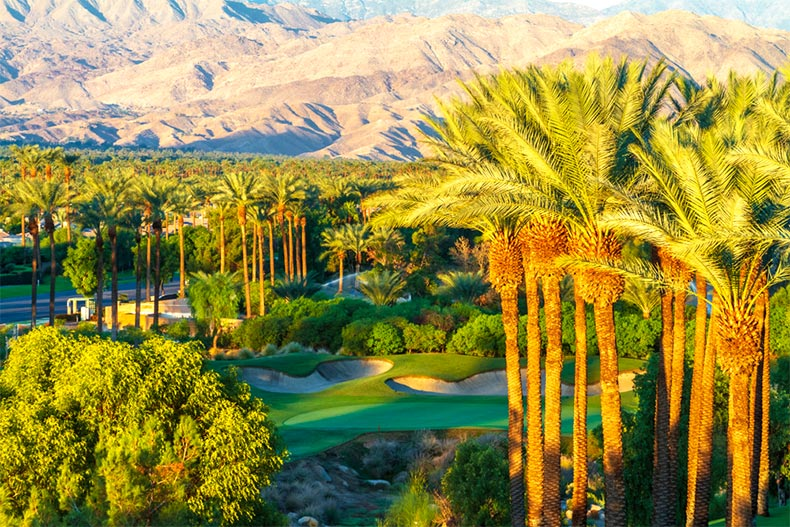 Aerial view of palm trees surrounding a green and bunkers in Indian Wells Golf Course