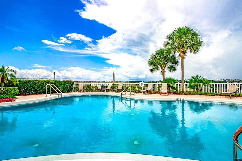 Palm trees beside the outdoor pool and patio at Kings Ridge in Clermont, Florida