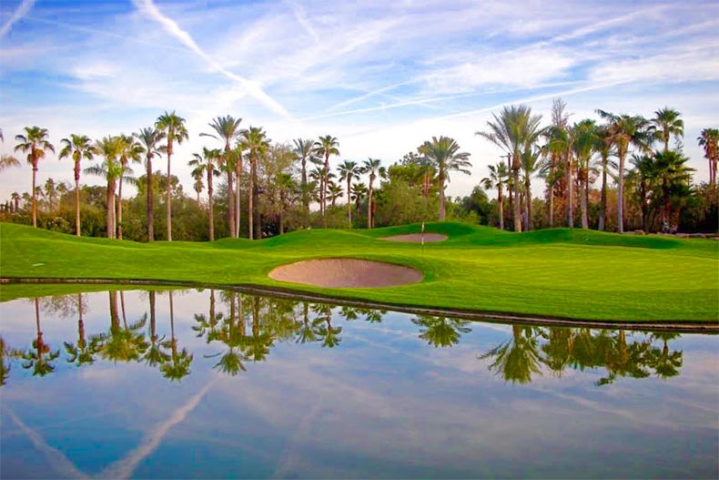 Palm trees surrounding the golf course at Laguna Woods Village in Laguna Woods, California