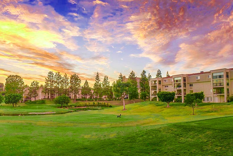 Photo of the golf course at the Laguna Woods Village 55+ Community in Laguna Woods, California