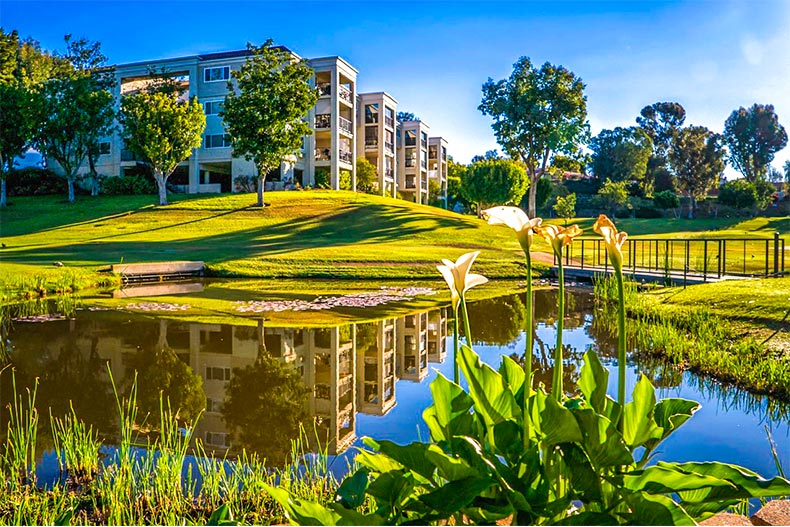 Pond and greenspace with homes nearby in Laguna Woods Village