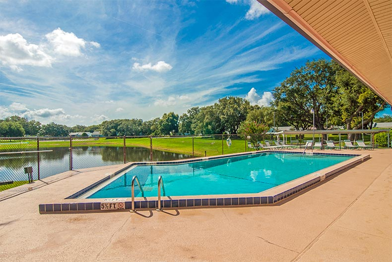 Small pool overlooking pond and greenspace in Scottish Highlands in Leesburg, FL