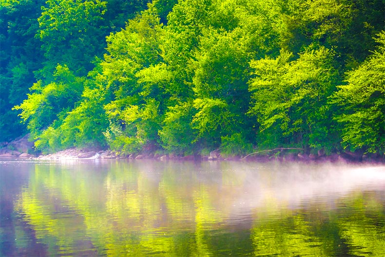 foggy Lehigh River surrounded by trees