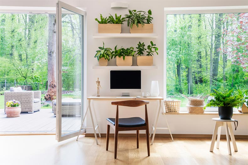 A spacious living room interior with plants and an outside view through big windows