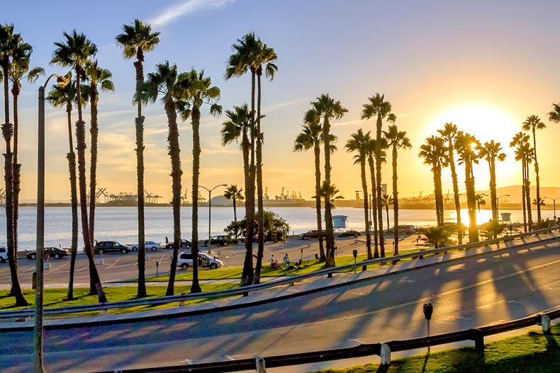 A coastal road at sunset in Long Beach, California