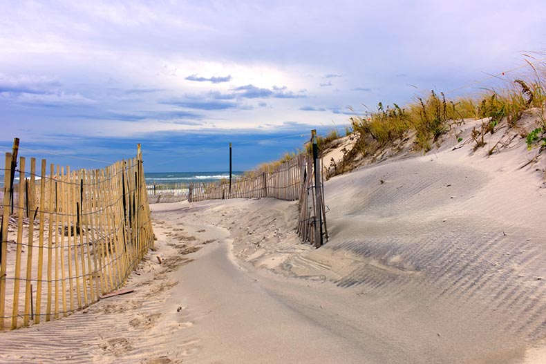 A path through sand dunes on a beach on Long Island, New York