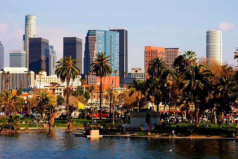 View of the palm trees, water, and buildings in downtown Los Angeles, California.