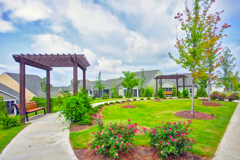 Carolina Arbors offers both an extensive list of amenities and activities that are sure to never leave you bored.
