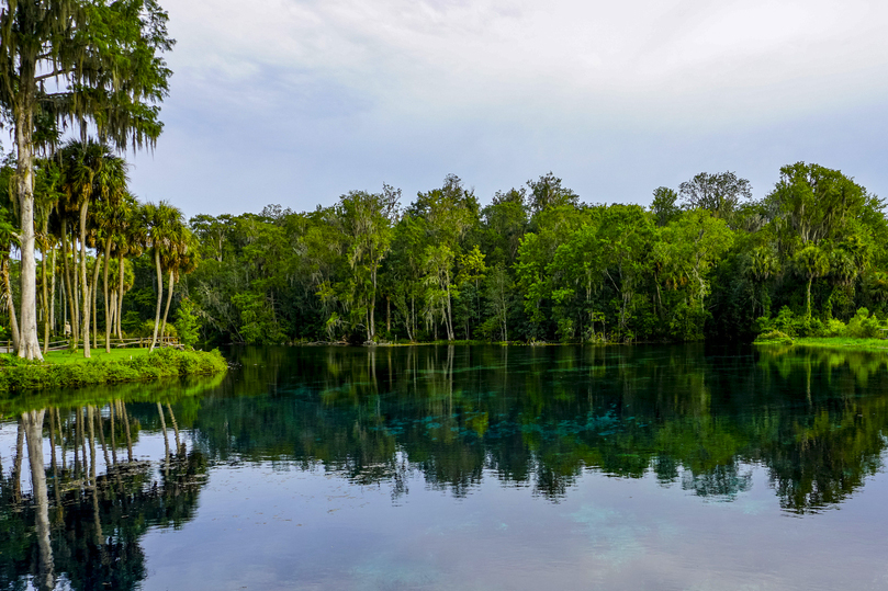 The area surrounding Ocala, FL has a lot of great communities and area attractions to offer active adults. (Image: Ocala National Forest)