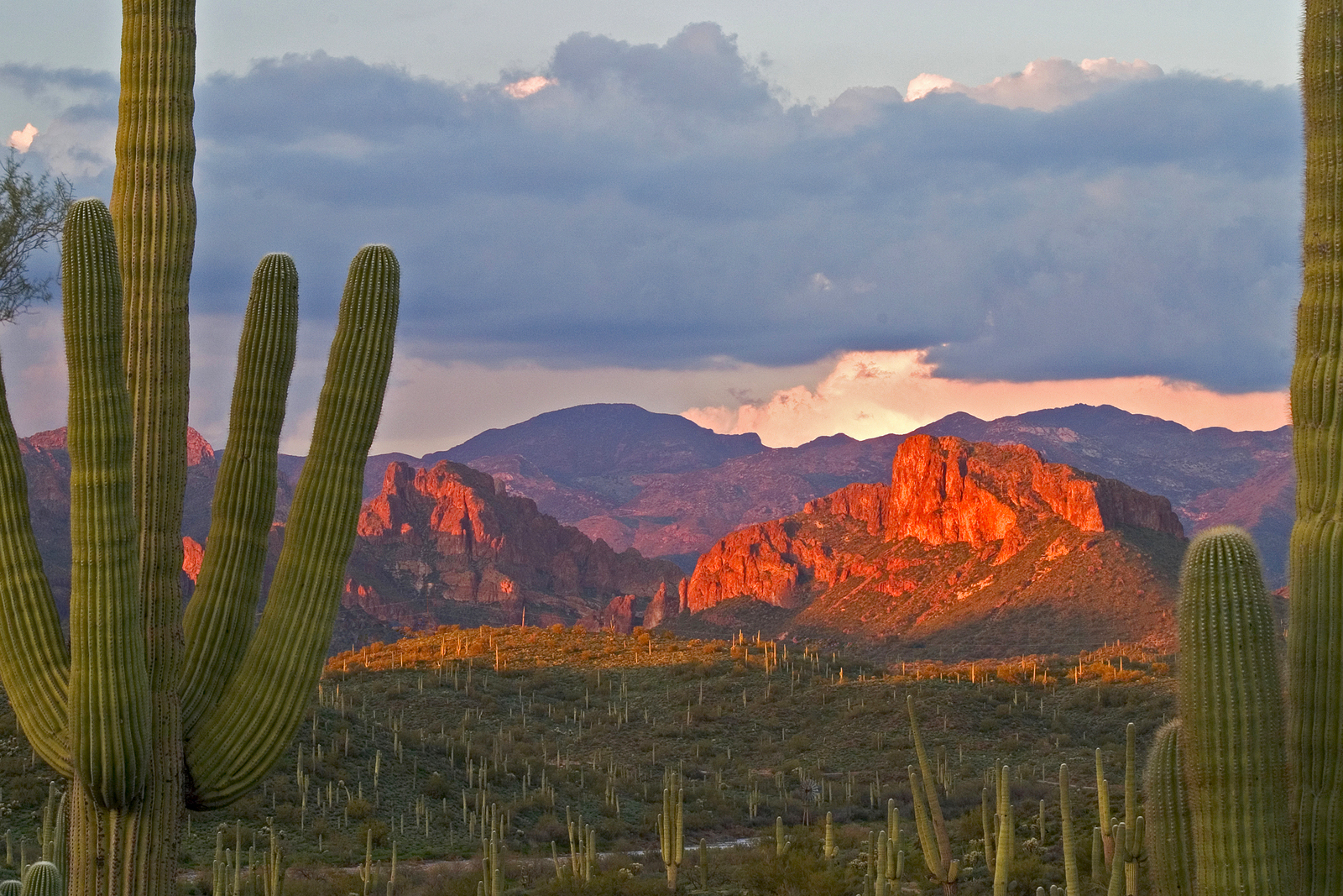 Phoenix, AZ was named a national hotspot for active adults.