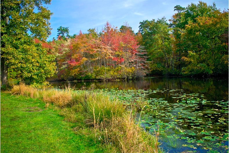 Fall colors over pond in park in Monmouth county