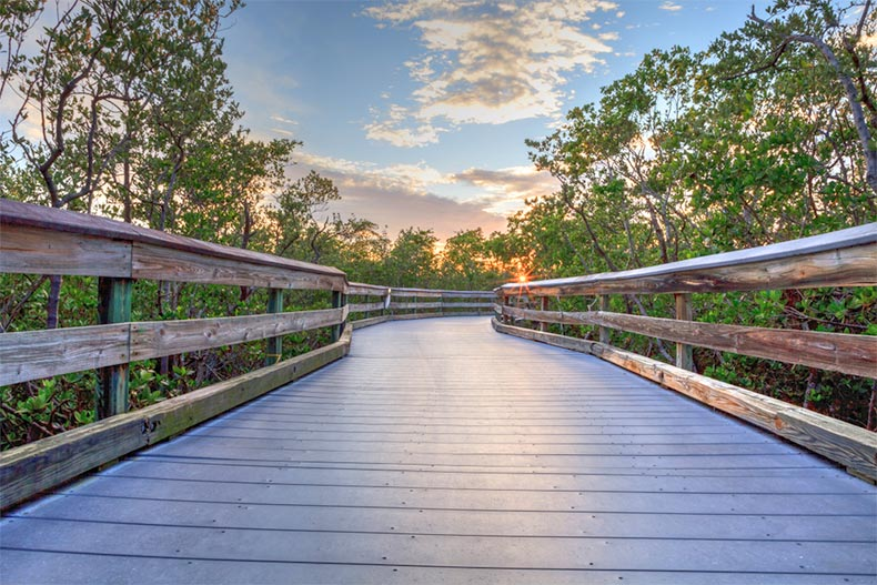 Boardwalk that travels over the marsh estuary that leads down to Clam Pass Beach in Naples, Florida