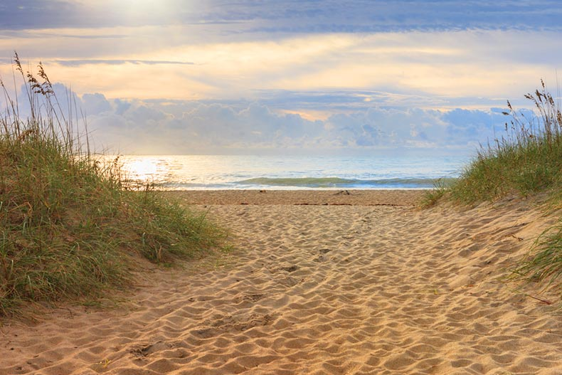 A beach with sand dunes on the Cape Hatteras National Seashore in North Carolina