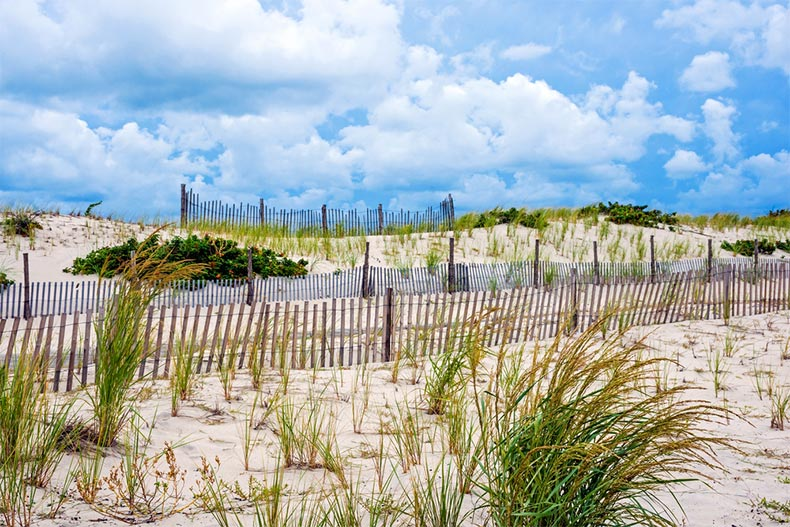 A blue sky over protected sand dunes in Seaside Park along the New Jersey coastline