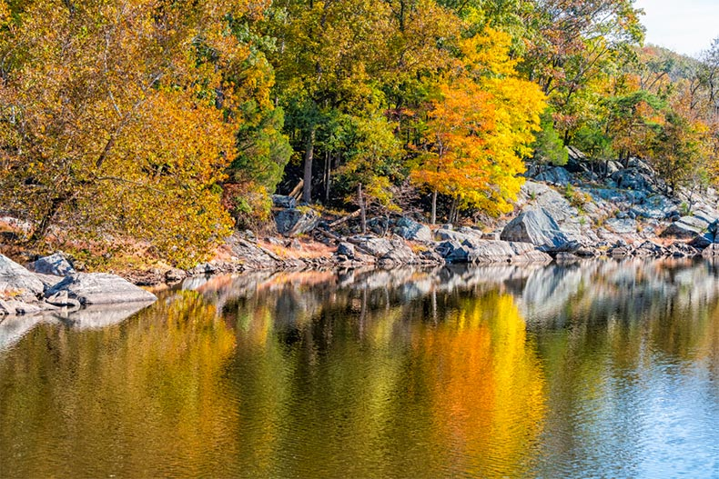 Autumn colors on shores of a body of water in Maryland