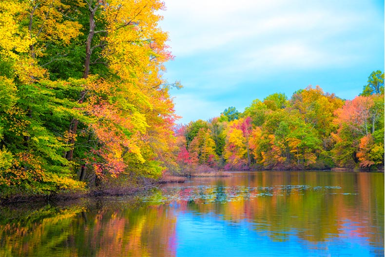 Fall foliage reflecting on the water in New Brunswick, New Jersey