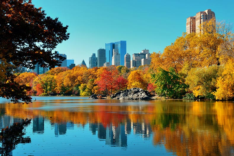 View of Central Park in New York City in autumn with midtown Manhattan in the background
