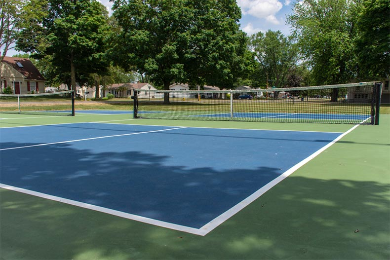 A community pickleball court surrounded by trees and houses