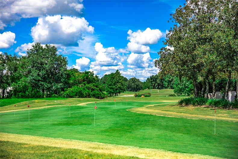 View of the golf course at Oak Run in Ocala, Florida